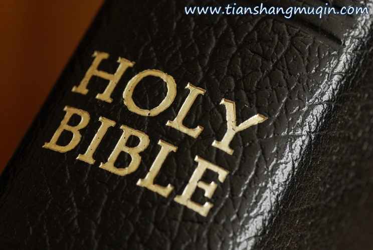 圣经是事实!!!(上帝的教会, 安商洪上帝, 母亲上帝)