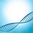 孩子躲不过的遗传有哪些?